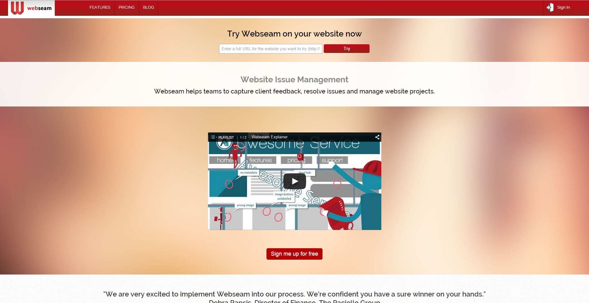 Webseam - Website Issue Management