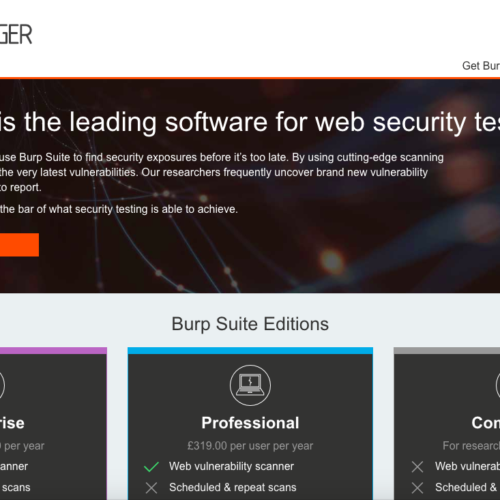 Burp-Suite web security testing
